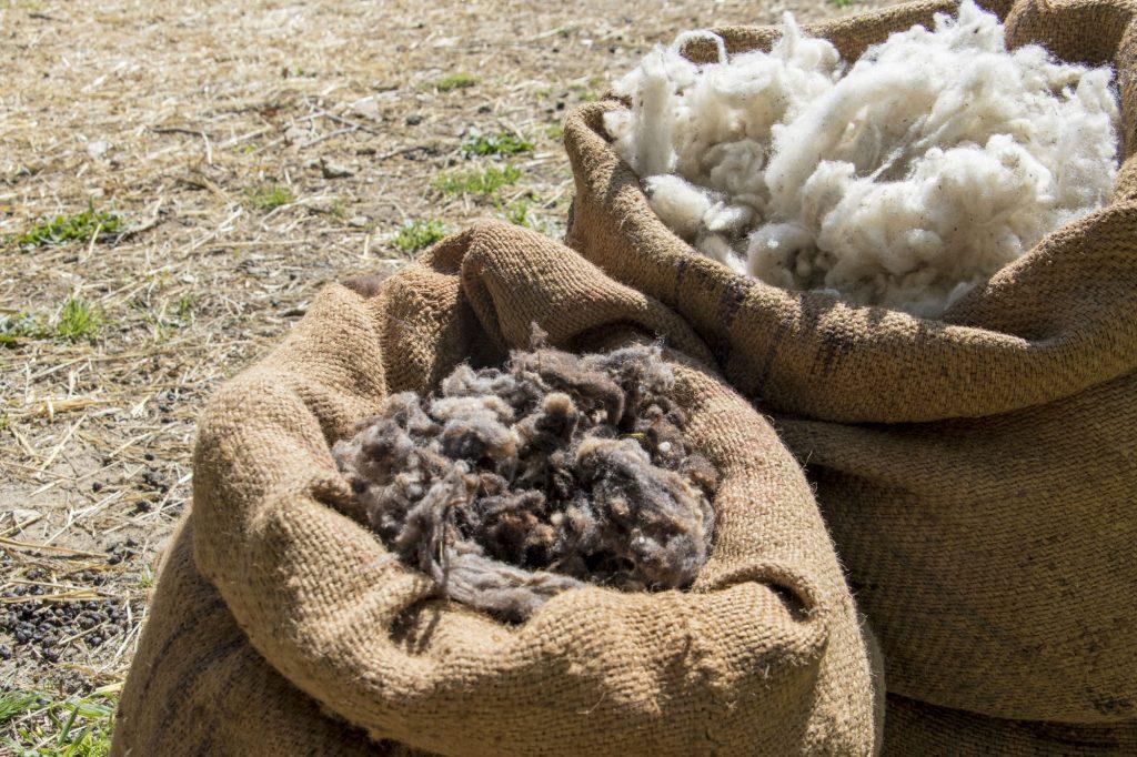 Sacs de laine