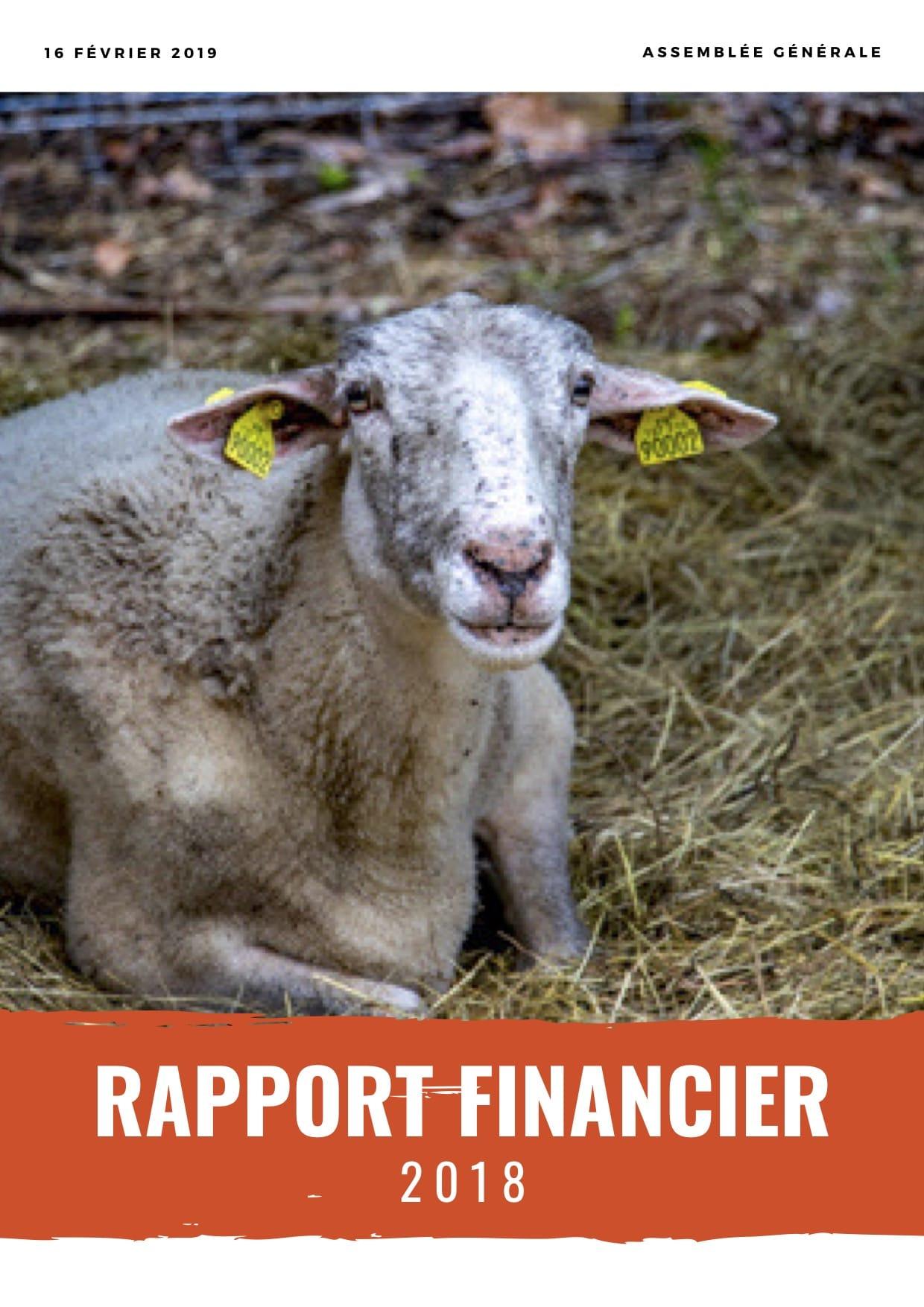 rapport_financier_2018